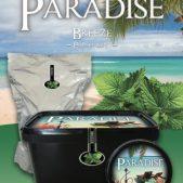 Paradise steam stones Breeze (Fresh Mint)